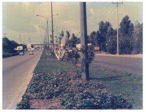 דרך פתח תקוה, שנות ה 70 בערך, צלם לא ידוע